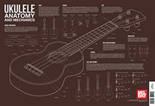 Ukulele Anatomy and Mechanics Wall Chart